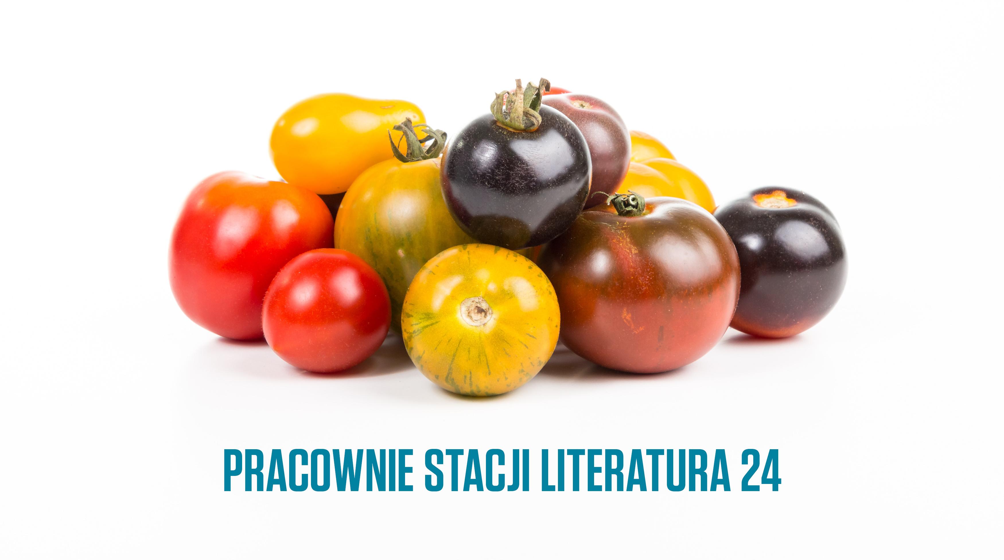 Stacja_Literatura_GRAFIKI_18