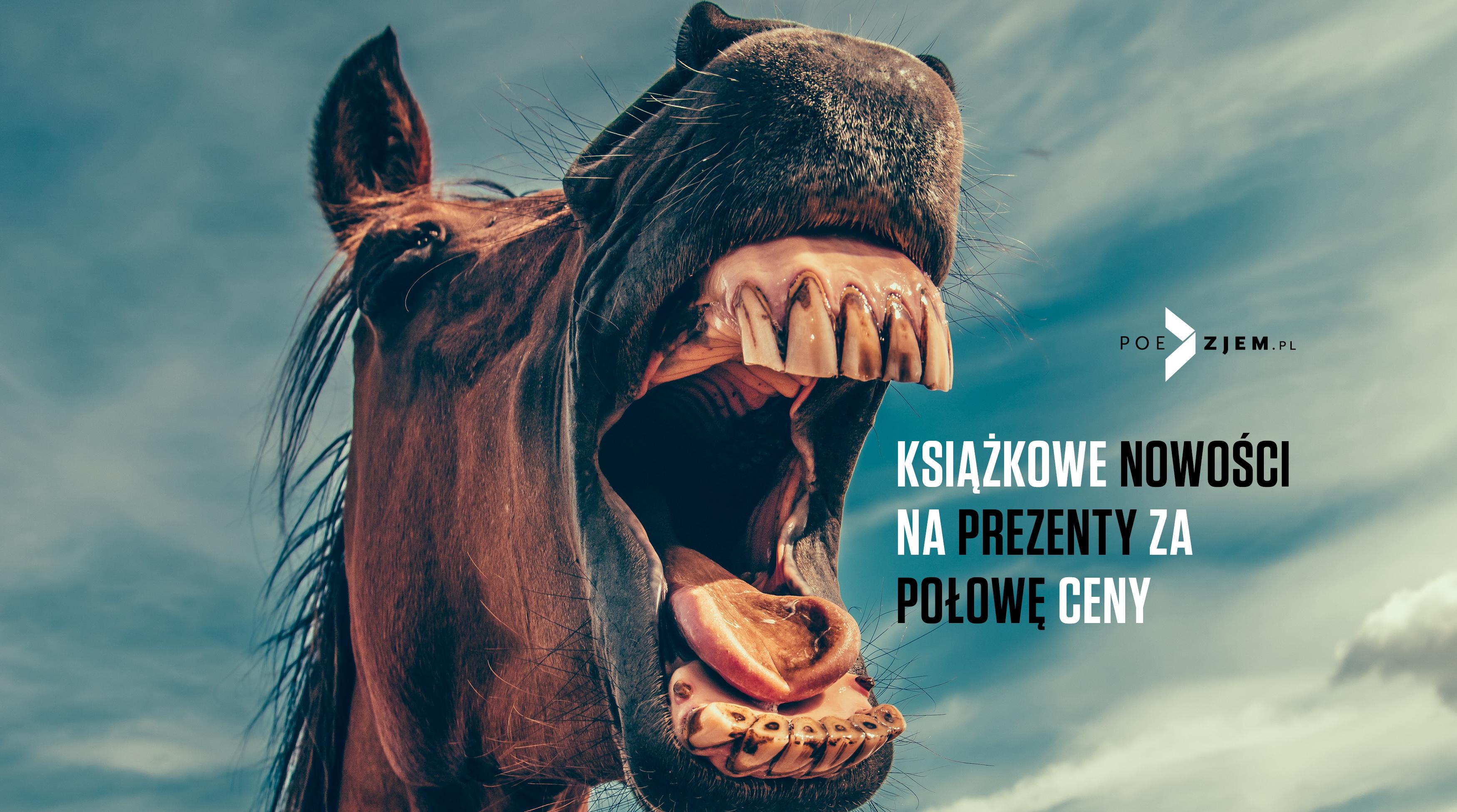 BL_Img_2018.11.08_Ksiazkowe_nowosci_na_prezenty_za_polowe_ceny__www_top