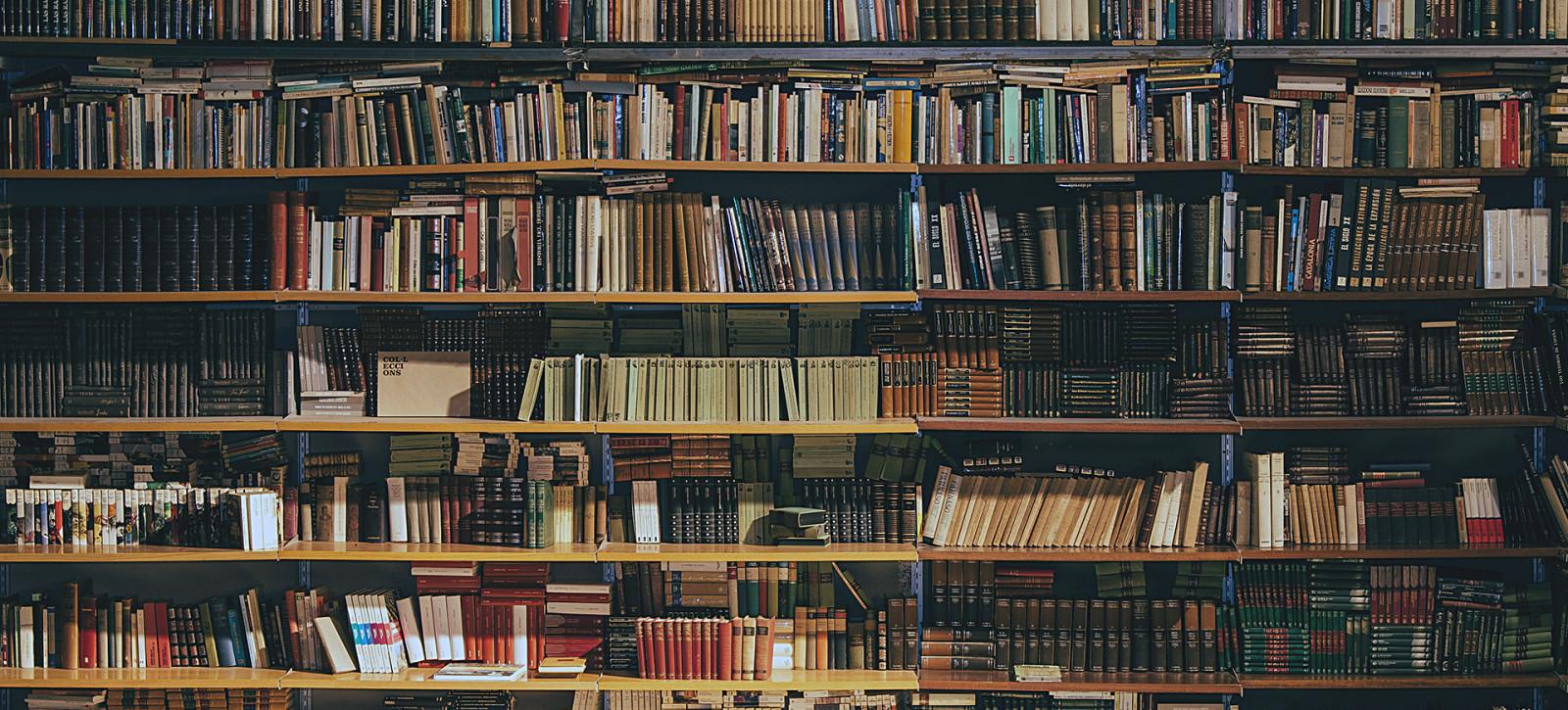 15_DEBATY__Biblioteka z poezja_02