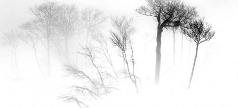 07_UTWORY__Raymond Queneau__Sroga zima