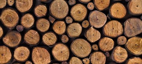 05_RECENZJE__Dawid Mateusz__Wiersze do spławiania drewna