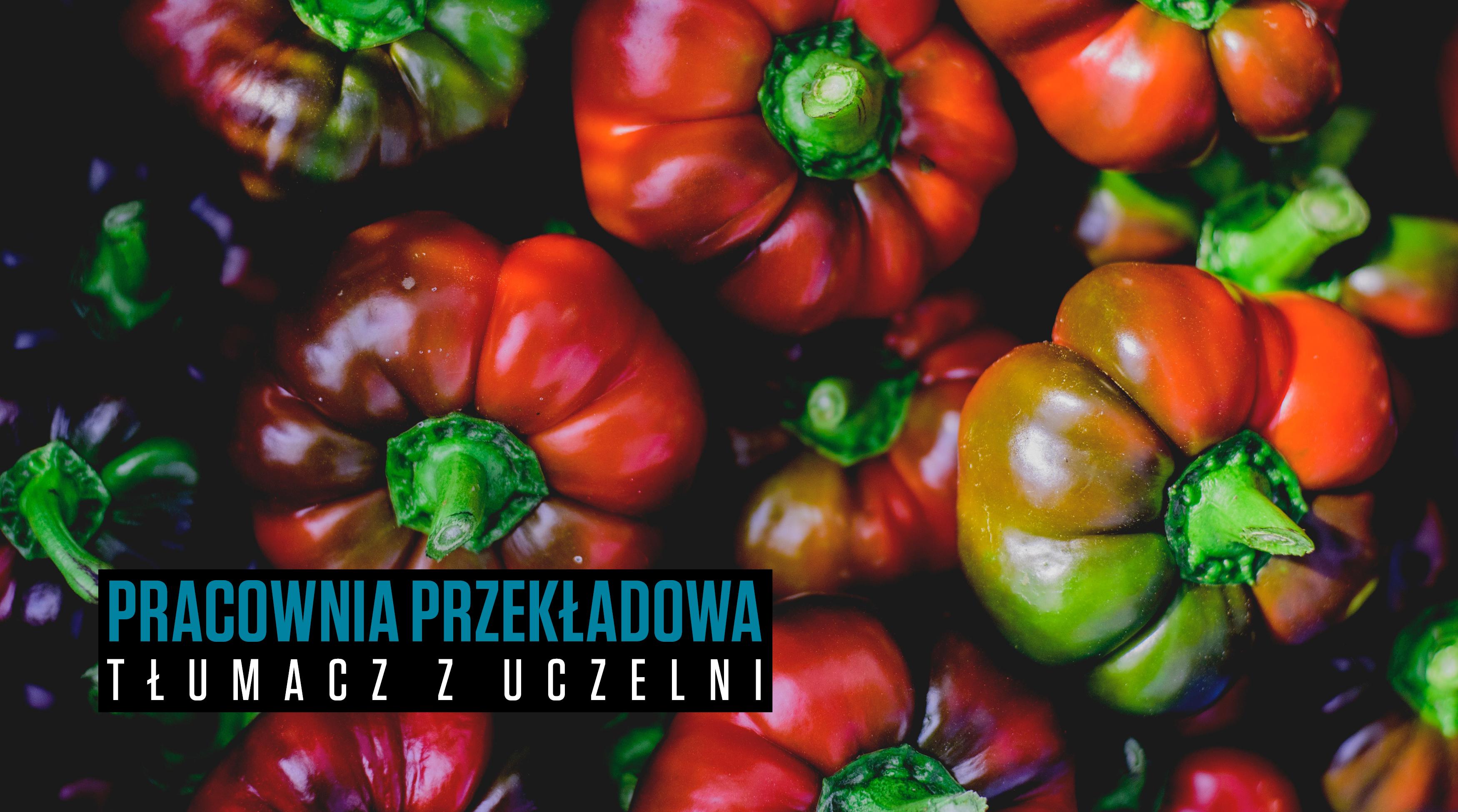 Stacja_Literatura_24_-_Przekładowa_2_www_top