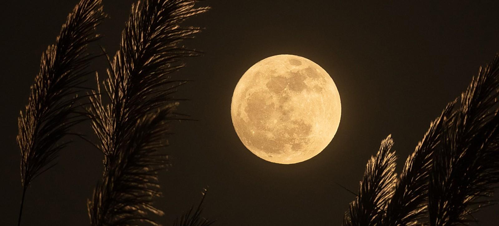 09_UTWORY__William Blake__Wyspa na Księżycu (2)