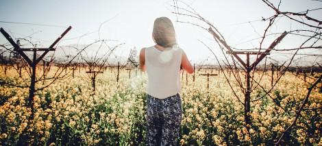 09_UTWORY__Małgorzata Zagajewska__Słońce zagląda na tyły ogrodu
